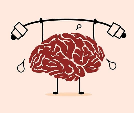 brein concentratie
