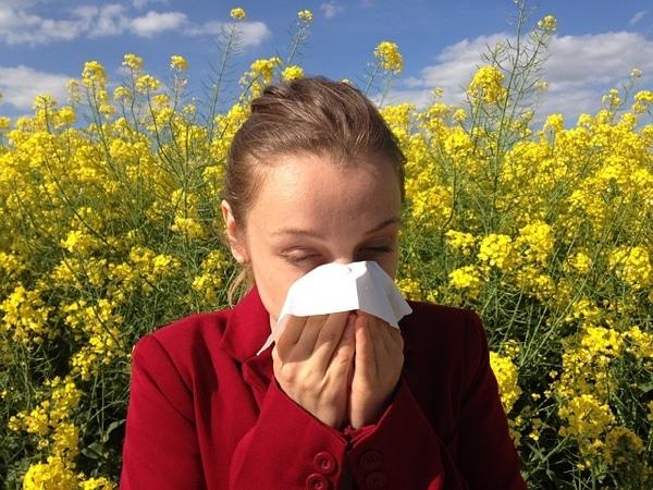 hooikoorts en ziekteverzuim