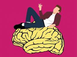 kantooromgeving en brein werknemer